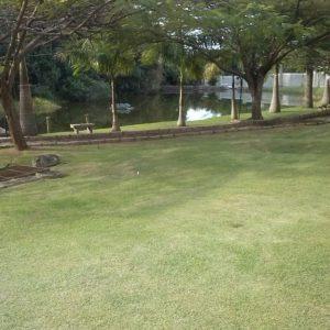 Terreno Condomínio Jardim Ribeirão I