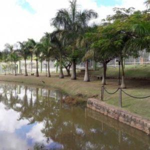 Terreno Condomínio Jardim do Ribeirão I