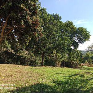Terreno Jardim do Ribeirão em Itupeva